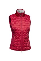 Picture of Daily Sports ZNS Bernie Wind Vest/Gilet - Red
